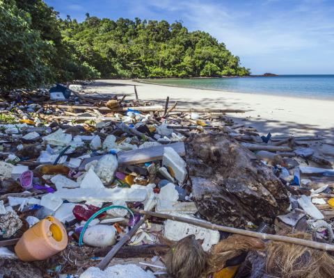 Verschmutzte Meere und Strände